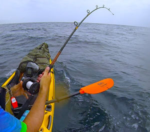 how to catch mahi mahi in a kayak 2