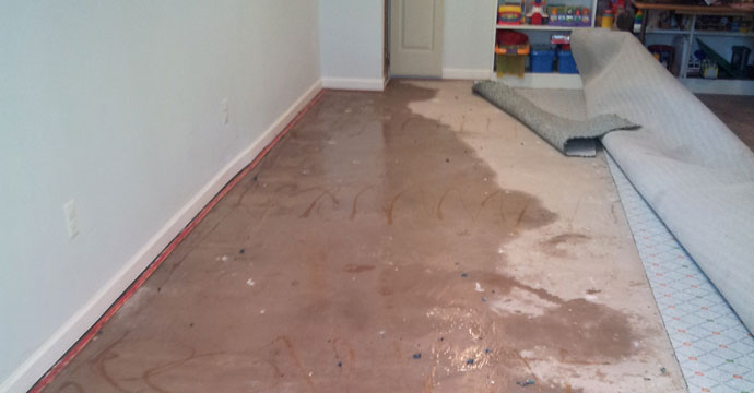 Image result for Preventing Carpet Water Damage From Flood Water?