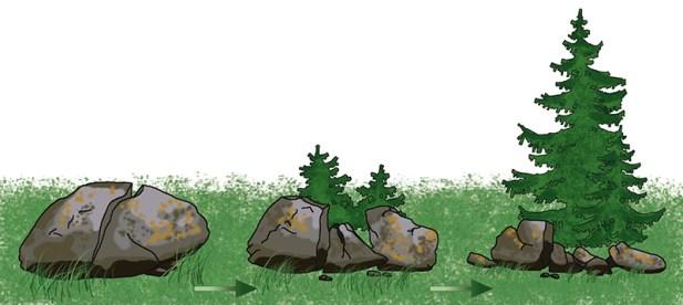 Kivimite murenemine