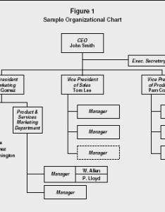 Organizational chart strategy levels examples manager type company hierarchy workplace also rh referenceforbusiness