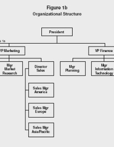 Figure  organizational structure also strategy levels examples advantages rh referenceforbusiness