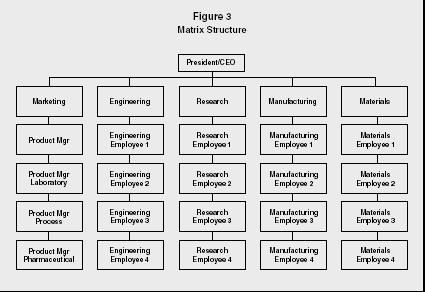 Figure 3 Matrix Structure