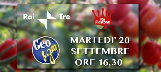 Re Fiascone a Geo, Rai 3