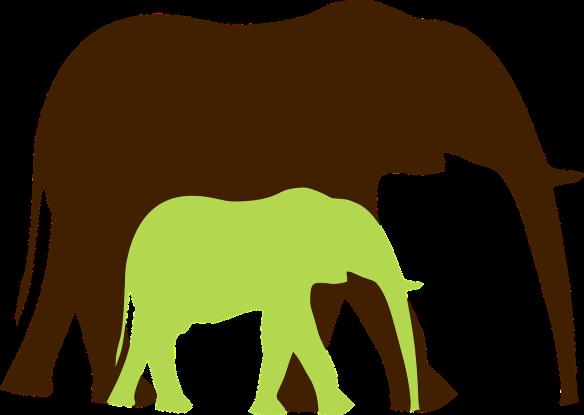 elephant-310836_1280