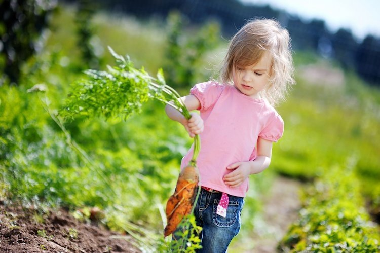 How to Create the Perfect Family Garden - Child Holding Carrot