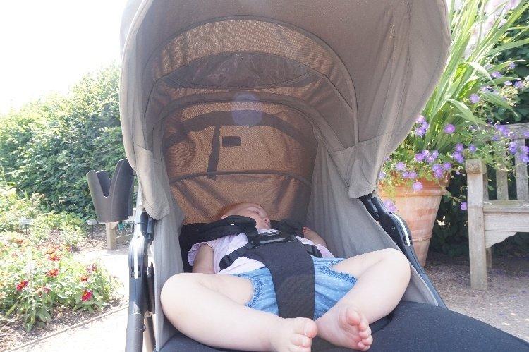 Mamas & Papas Armadillo Review - Canopy