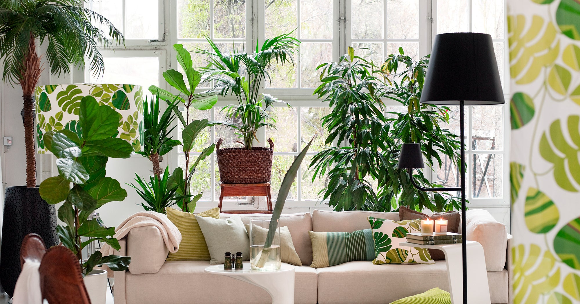 Top Home Trends Of 2019 For Decor Inspiration In 2020