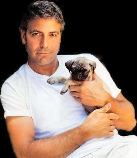 george_clooney_with_a_puppy-138