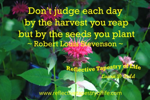 """Don't judge each day by the harvest you reap but by the seeds you plant""  ~ Robert Louis Stevenson ~"