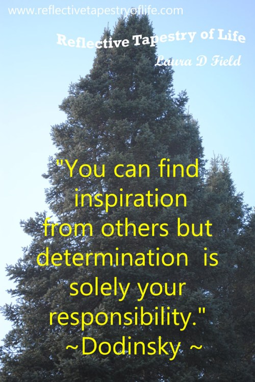 """You can find inspiration from others but determination is solely your responsibility.""  ~Dodinsky"