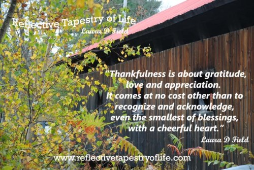 """Thankfulness is about gratitude, love and appreciation.  It comes at no cost other than to recognize and acknowledge, even the smallest of blessings, with a cheerful heart."" ~ Laura D. Field ~ www.reflectivetapestryoflife.com"