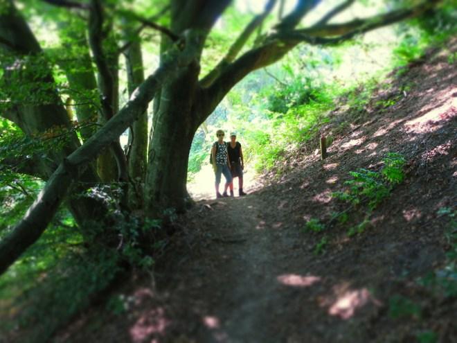 """At vandre er livet: På vej ud i """"vildnisset"""" i den næsten magiske skov"""