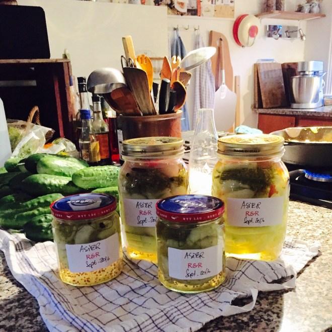 Syltede asier er et 'must' i mit køkken.