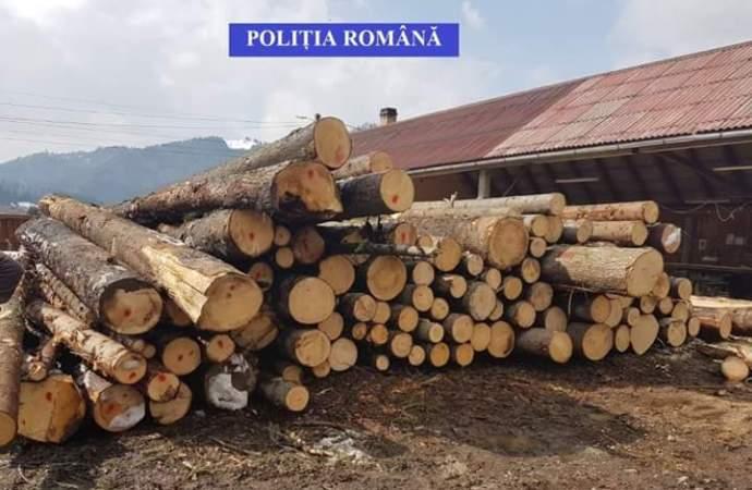 Protecția fondului forestier, o prioritate pentru Poliția Română