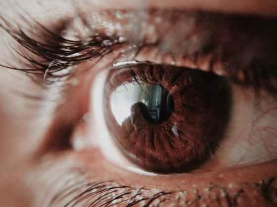 brown human eye