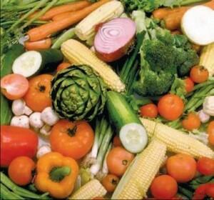 Nutritia vegetariana