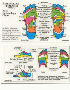 The reflexology research web site displays charts for foot and hand fees  have seen advertised ranged from to per session also  close look rh quackwatch