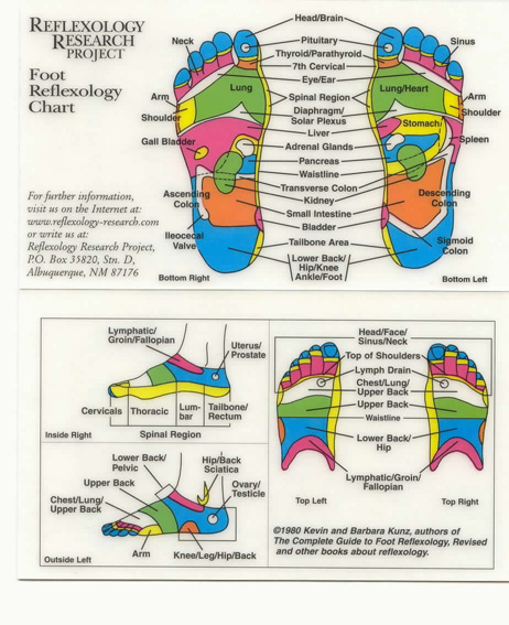 pressure points diagram massage 2002 saturn sl2 wiring reflexology a close look the research web site displays charts for foot and hand fees i have seen advertised ranged from 35 to 100 per session