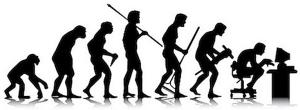 evolution of sedentary posture