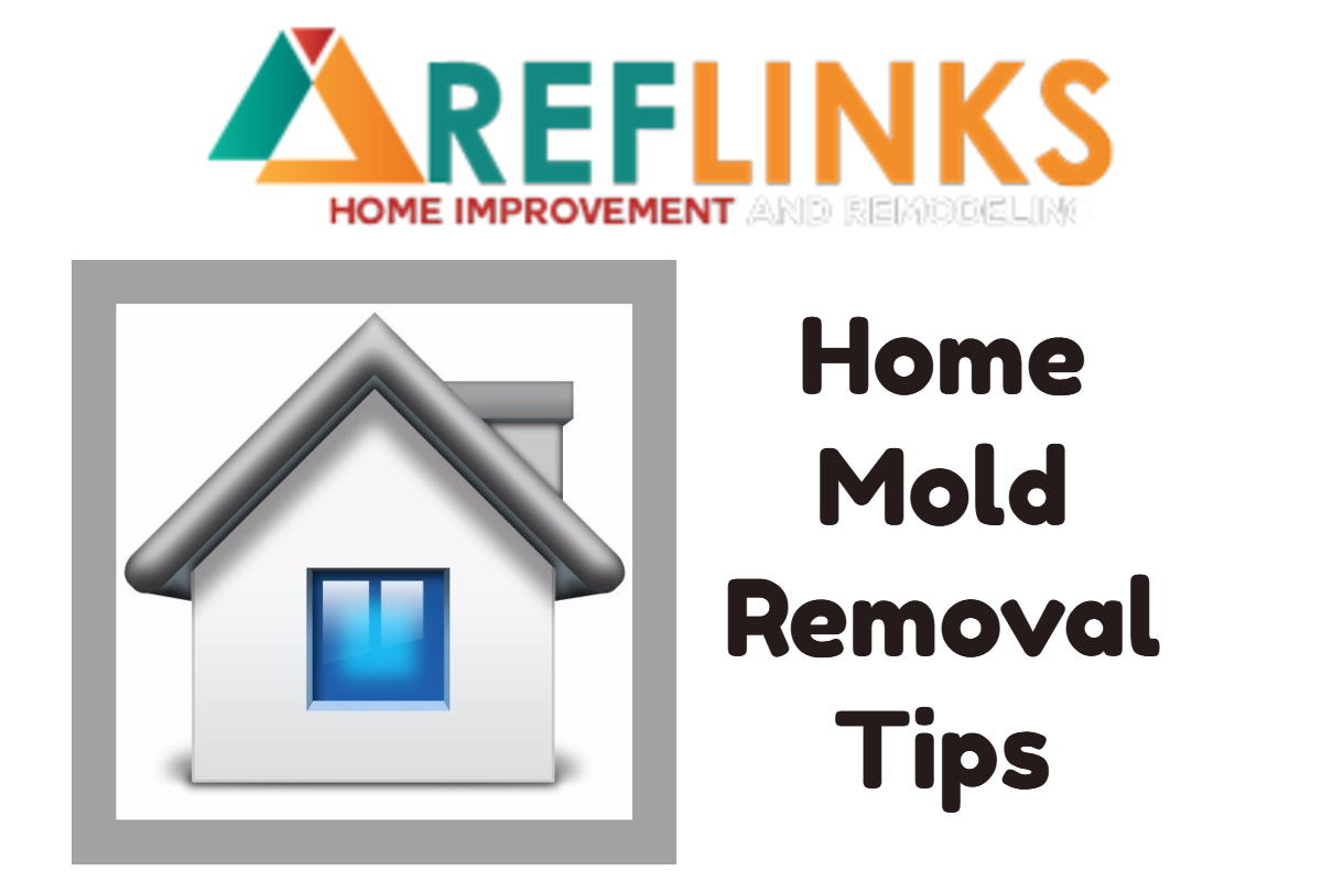 removing mold from a house