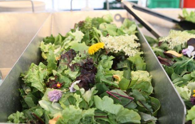 Salate zum Sattwerden von Blattfrisch