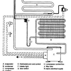 Refrigerator Compressor Wiring Diagram 36 Volt Golf Cart Battery Charger Domestic Components And Operations Details