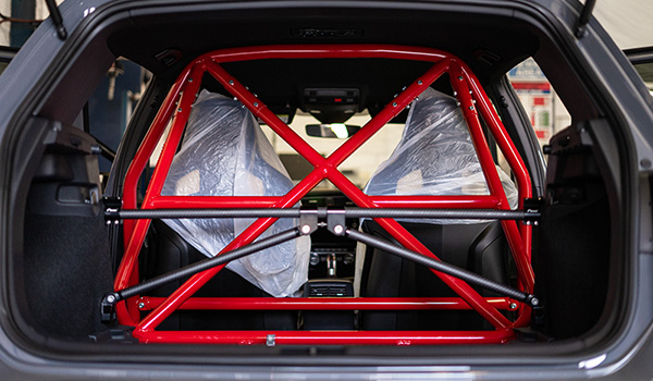 Weichers Roll Cage