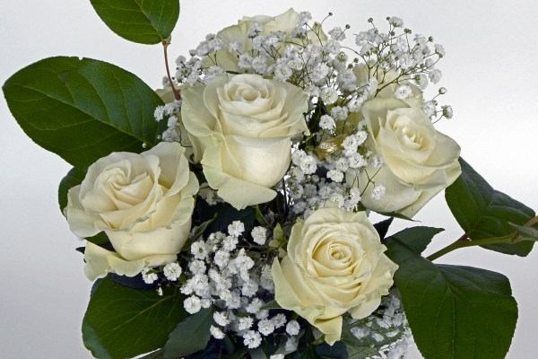Bridal bouquet of white roses and million star/ baby's breath flowers .