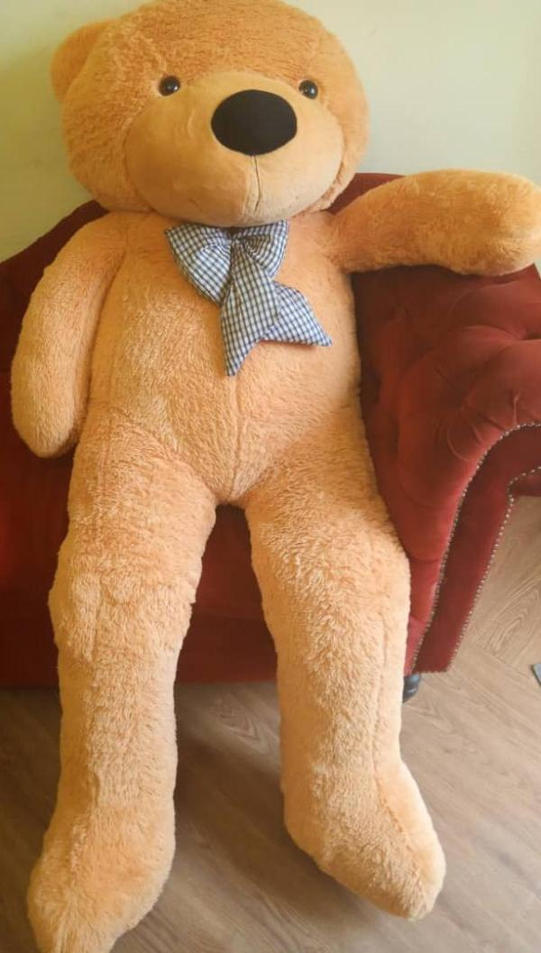 Life sized teddy bear
