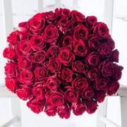 Bouquet of fresh cut red Roses regal flowers