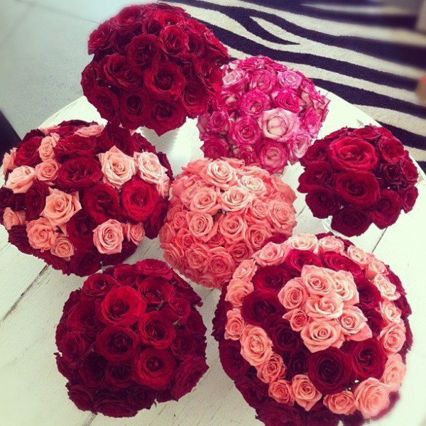 various options of red and pink roses