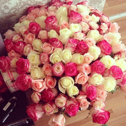 Bellissimo (Beautiful) – Luxurious mix of white and pink roses
