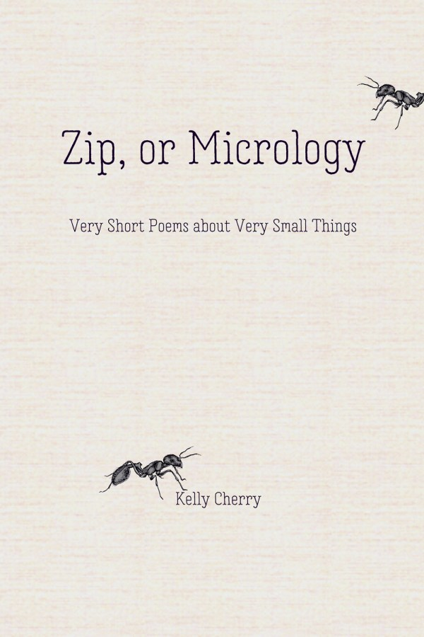Zip or Micrology by Kelly Cherry