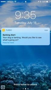 Aplicación de Furgo Dog camera enviando una notificación
