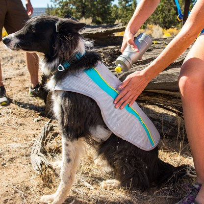 Chaleco de enfriamiento para perros ruffwear