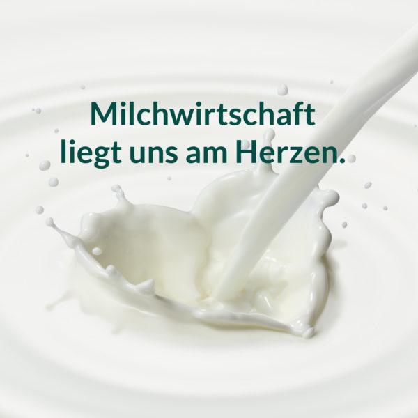 Neues Webdesign für die Nierswalder Milch KG