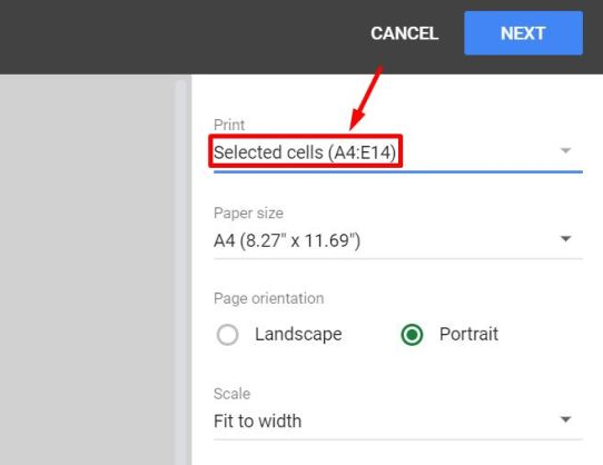 Set The Print Menu to Selected Cells