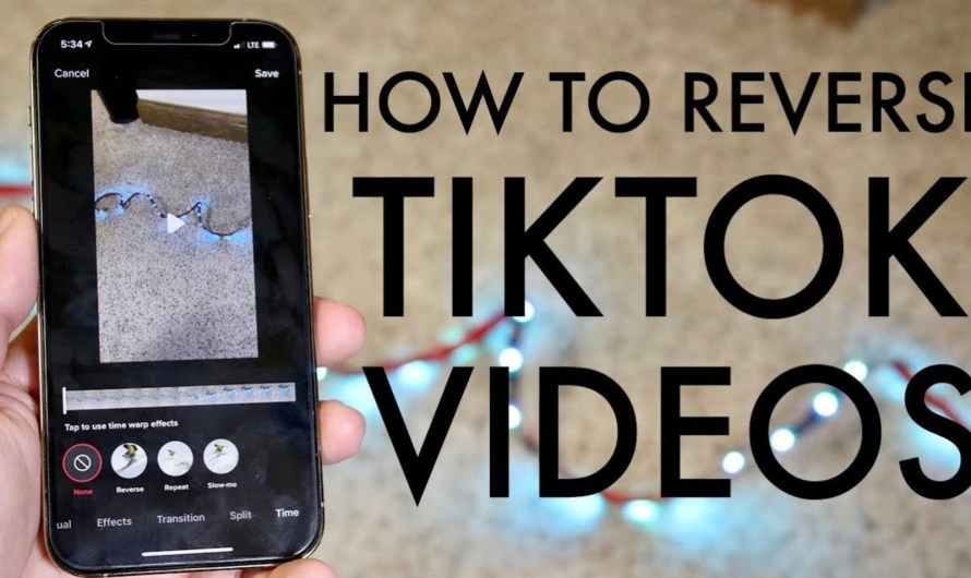 How to Reverse a Video on TikTok: A Beginner's Guide