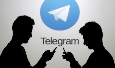 How to Report Someone on Telegram