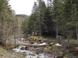 Along the road down the mountain from Malbun towards Vaduz