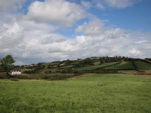 Castleblayney Fields