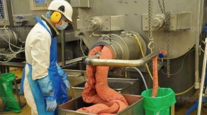Abatoir Bigard à Cuiseaux et consommation de viande
