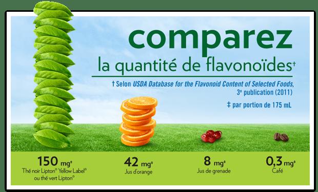 Les flavonoïdes dans les thés Lipton