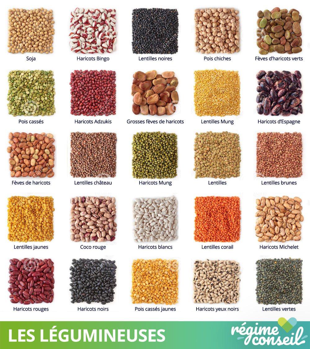 Les différents types de légumineuses