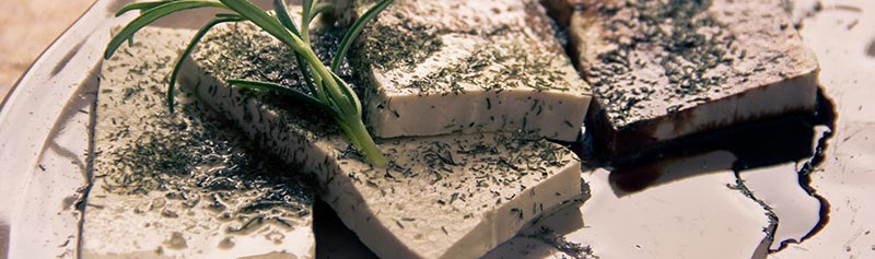 Photographie en gros plan de tofu (soja)