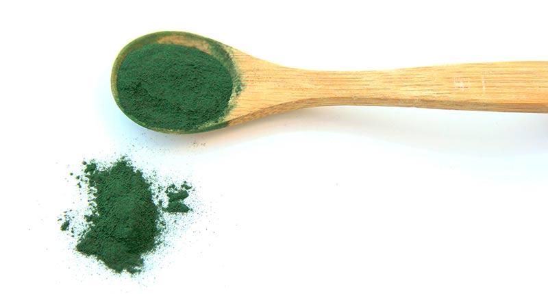 Spiruline et algues comestibles bonnes pour la santé
