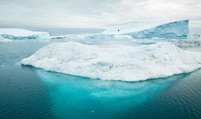 freddo del polo nord