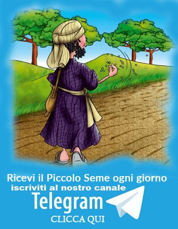 CANALE TELEGRAM IL PICCOLO SEME