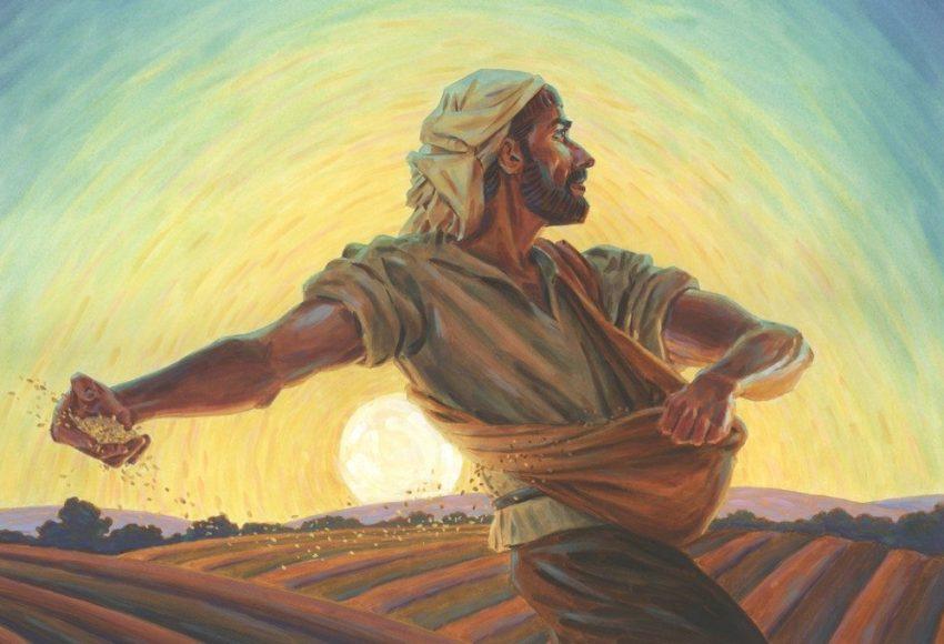 il seminatore parabola di Gesù
