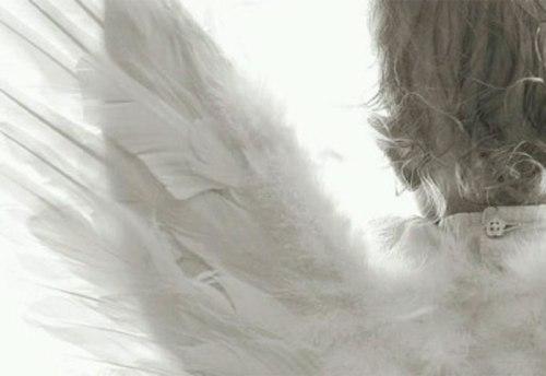 essere amico degli angeli custodi